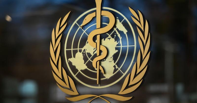 https://www.laabeja.pe/wp-content/uploads/2020/06/organizacion_mundial_de_la_salud_pedofilia.jpg
